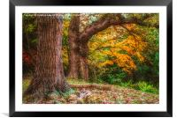 Trip To Autumn, Framed Mounted Print