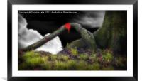 The Magic Of Nature, Framed Mounted Print