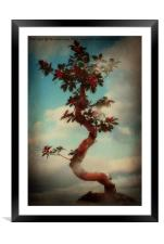 Natures Magic 2, Framed Mounted Print