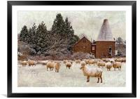 Too cold even for sheep, Framed Mounted Print