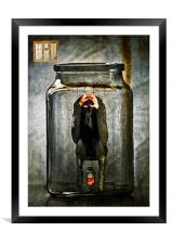 Caught, Framed Mounted Print