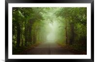 The Green Canopy, Framed Mounted Print