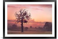 Quiet of the morning, Framed Mounted Print