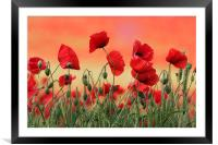 Poppy Field, Framed Mounted Print