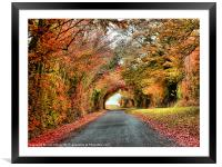 Autumn in Oxfordshire 2, Framed Mounted Print