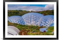 Eden Project Biomes, Framed Mounted Print