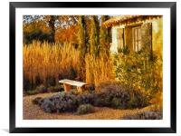 Le Jardin de Vincent 2, Framed Mounted Print