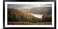Abbey Bank Autumn , Framed Mounted Print