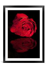 """""""Reflection Of Love"""", Framed Mounted Print"""
