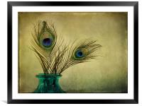 peacock feathers and vase, Framed Mounted Print