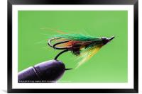 Salmon fly in vice, Framed Mounted Print