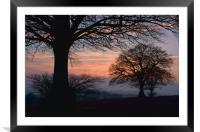 Sunset through the trees, Framed Mounted Print