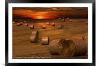 Harvest Sunset, Framed Mounted Print