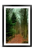 Friston Forest, Framed Mounted Print