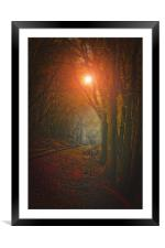 TRACKS IN THE WOODS, Framed Mounted Print