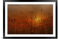 SUNSET IN THE VALLEY, Framed Mounted Print