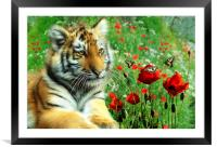 Tiger Butterflies, Framed Mounted Print