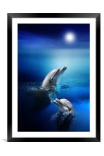 Dolphin Delight, Framed Mounted Print