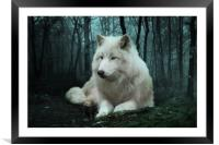 The White Wolf, Framed Mounted Print