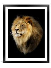 Aslan, Framed Mounted Print