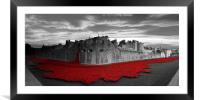 Tower Of London Remembers , Framed Mounted Print