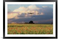 Remembrance Day , Framed Mounted Print