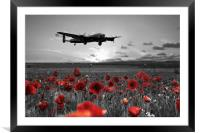 Over The Fields - Selective, Framed Mounted Print