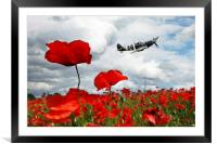 Spitfire Over The Poppy, Framed Mounted Print