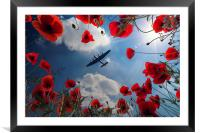 Looking Upon The Fallen, Framed Mounted Print