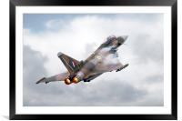 Typhoon Tribute, Framed Mounted Print
