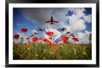 Red Arrows Poppy Fly Past, Framed Mounted Print