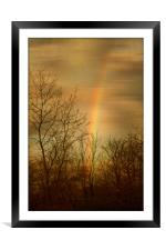 Rainbow Tracery., Framed Mounted Print