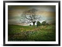 Country Roads, Framed Mounted Print