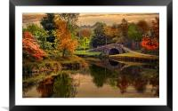 Autumn along the canal., Framed Mounted Print
