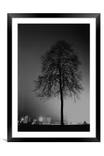 tree silhouette, Framed Mounted Print
