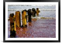 Worn and Weathered, Framed Mounted Print