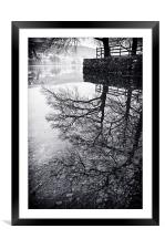 Tree Reflections, Coniston, Framed Mounted Print