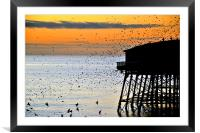 Starlings At Sunset, Framed Mounted Print