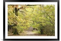 COUNTRY PATH, Framed Mounted Print