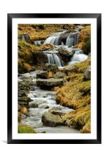 FREE WATER, Framed Mounted Print