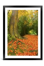 Golden Leaves and Autumn's Trees, Framed Mounted Print