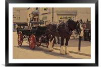 Horse and carriage, Framed Mounted Print