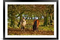 Grazing Horses Painted Effect, Framed Mounted Print