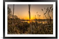 New day Norfolk Broads, Framed Mounted Print