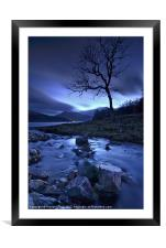 Lochside Tree, Framed Mounted Print