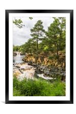Low Force Upper Teesdale, Framed Mounted Print