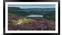 Ladybower in Bloom, Framed Mounted Print