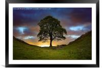 The Sycamore Gap, Framed Mounted Print