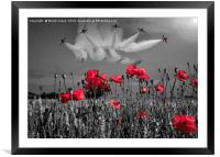 The Reds, Framed Mounted Print