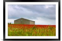 Red Poppies and a Barn, Framed Mounted Print
